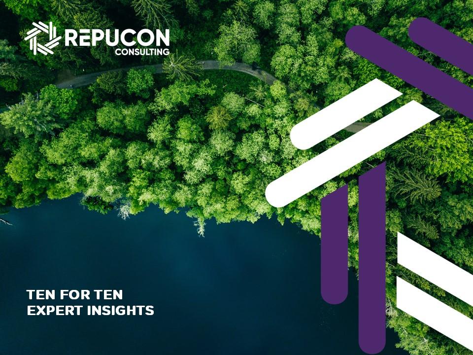 Repucon Tourism Consulting